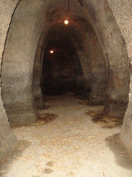 La Tinaja: Cuevas